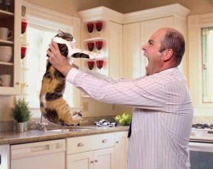 Мужчина кричит на кошку на кухне
