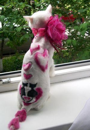 Белая кошка с узорами на спине розовыми сердечками и розовым бантиком на шее сидит на окне