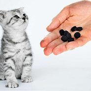 Можно ли кошкам давать активированный уголь
